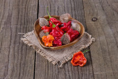 Peri peri capsicum on a burlap cloth Stock Photo