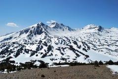 Peric máximo en Pyrenees Fotografía de archivo