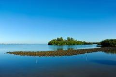 Perico Bayou lizenzfreies stockbild