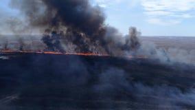 Pericoloso per l'ambiente, grandi incendi violenti rapidi dal prato asciutto con fumo che va su al cielo vicino al fiume, vista s video d archivio