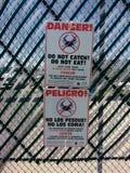 Perigo do câncer, caranguejos azuis da garra, EUA Foto de Stock Royalty Free