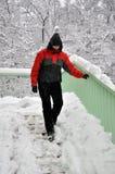 Perigo do inverno Fotografia de Stock Royalty Free