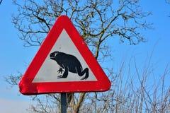 Perigo-sinal engraçado com uma rã Fotografia de Stock Royalty Free