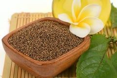 Perilla seeds and oil Perilla frutescens L. Britton Royalty Free Stock Image