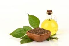 Perilla seeds and oil Perilla frutescens L. Britton Royalty Free Stock Images