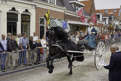 Period costume rider with Frisian carriage horse Stock Photos