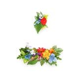 Period och streck som göras av sidor & blommor Arkivfoton