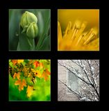 Periodi dell'anno fotografia stock libera da diritti