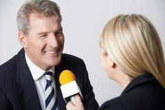 Periodista de sexo femenino With Micropho de Being Interviewed By del hombre de negocios imagen de archivo
