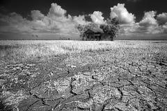 Periodo di siccità fotografia stock libera da diritti