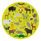 Periquito Jagu da jaritataca de Eagle do guaxinim da cabra de montanha da serpente da víbora de poço do urso polar de lobo-marinh ilustração do vetor