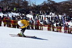 People enjoy Pond Skimming, a fun way to celebrate the end of the winter season. Perisher, Australia - Sept 30, 2018. People enjoy Pond Skimming. The pond-skim royalty free stock images