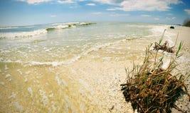 Perisor狂放的海滩视图 免版税库存照片