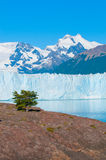 Perito莫尔诺冰川,巴塔哥尼亚,阿根廷 免版税库存图片