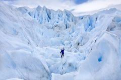 Perito莫尔诺冰川-阿根廷 免版税库存图片