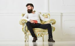 Perito del concepto de la literatura El machista pasa ocio con el libro El hombre con la barba y el bigote se sienta en la butaca imágenes de archivo libres de regalías