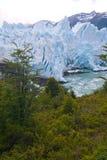 perito för glaciärmoreno patagonia Arkivfoton