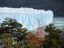 Perito Moreno royalty free stock photography