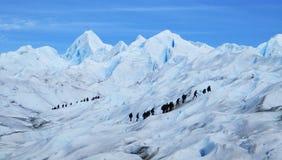 Perito Moreno Glacier Big Ice Trekking med turister, Santa Cruz Argentina fotografering för bildbyråer