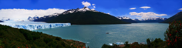 Perito Moreno Glacier & Lago Argentino panoramic. Panoramic photo of the advancing Perito moreno Glacier and the argentine lake, southern Argenina patagonia Royalty Free Stock Image