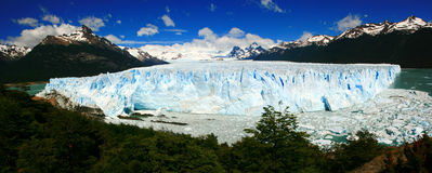 Perito Moreno Glacier & Lago Argentino panoramic. Panoramic photo of the advancing Perito moreno Glacier and the argentine lake, southern Argenina patagonia Stock Image