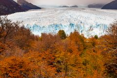 The Perito Moreno Glacier located in the Los Glaciares National Park in Santa Cruz Province, Argentina. With the autumn tree colours in the foreground stock images