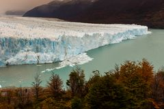 The Perito Moreno Glacier located in the Los Glaciares National Park in Santa Cruz Province, Argentina. With the autumn tree colours in the foreground royalty free stock image