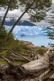 Perito Moreno glaciär - Patagonia - Argentina Fotografering för Bildbyråer