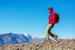 Perito Moreno Park royalty free stock images