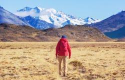 Perito Moreno Park image stock