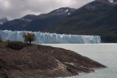 Perito Moreno. South America, Argentina, Pargue Nacional Los Glasiares, glacier Perito Moreno Royalty Free Stock Image