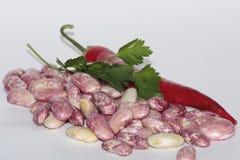 Peritos dos feijões, agradáveis provar e ricos nas vitaminas, pratos picantes deliciosos Imagens de Stock Royalty Free