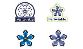 periwinkle Lizenzfreies Stockbild