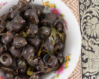 Periwinkle Curry,Local Foods of Thailand Stock Photos