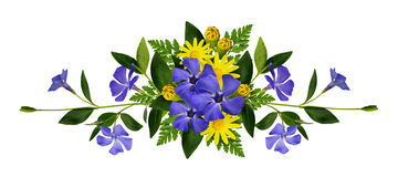 Periwinkle and daisy flowers composition Stock Photography