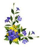 Periwinkle and daisy flowers decoration Stock Images