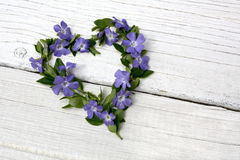 Periwinkle floral heart Stock Photo