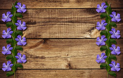 Periwinkle flowers on wood Royalty Free Stock Image
