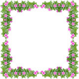 Periwinkle frame Stock Photography