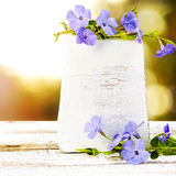 Periwinkle on old wood background with bokeh lights Royalty Free Stock Photos