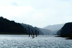 periyar flod fotografering för bildbyråer