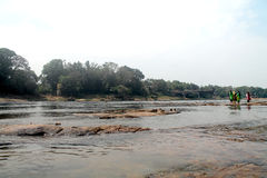 Periyar flod, Kerala Arkivbilder