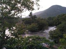Periyar Fluss lizenzfreie stockfotos