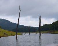 Periyar See mit Hügeln und dem Grün im Hintergrund an einem bewölkten Tag, Thekkady, Kerala, Indien Stockbild