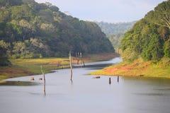 Periyar sjö och nationalpark, Thekkady, Kerala, Indien royaltyfri bild