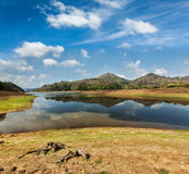 Periyar wildlife sanctuary, India Royalty Free Stock Photo
