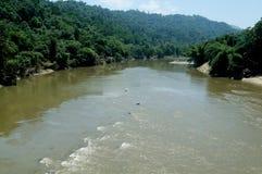 Periyar znaczenie: duża rzeka długa rzeka i rzeka z wielkim rozładowanie potencjałem w Indiańskim stanie Kerala, obrazy stock