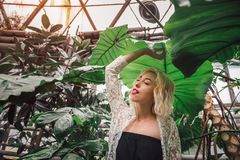 Perky playful female fashion model and exotic plants. Fashion portrait of attractive female model standing under a giant leaf with eyes closed playfully sticking Stock Photo