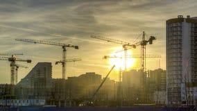 Perla de Báltico de la construcción Imagen de archivo