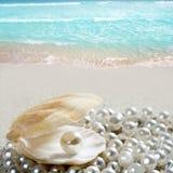 Perla del Caribe en la playa blanca de la arena del shell tropical Foto de archivo